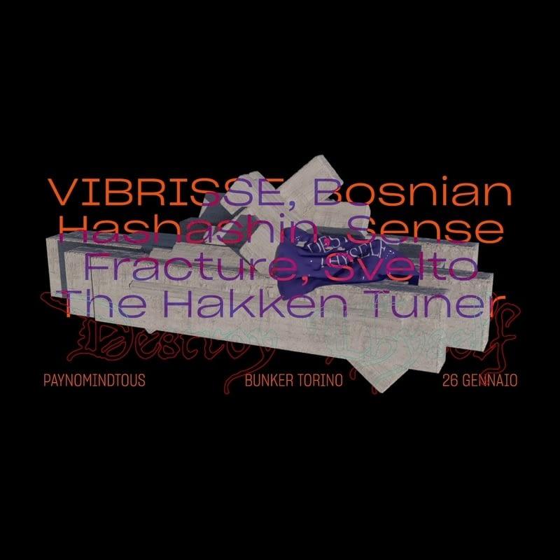 DESTROY THYSELF: Sense Fracture, Svelto, Bosnian Hashashin @ Bunker | 26/01/19 | PAYNOMINDTOUS.IT