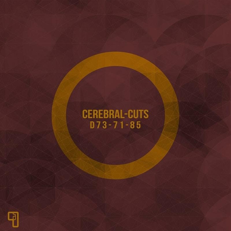 Album premiere: Cerebral-Cuts - D73-71-85 [DLT9 - Delta 9 Recordings] | PAYNOMINDTOUS.IT