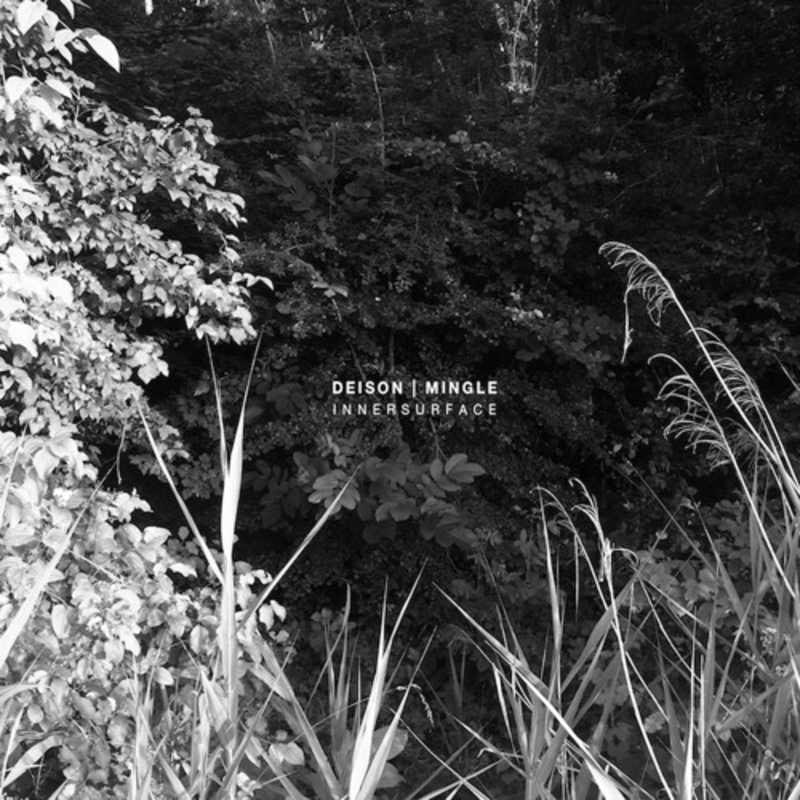 Deison & Mingle - Innersurface [ST.AN.DA] | PAYNOMINDTOUS.IT 1