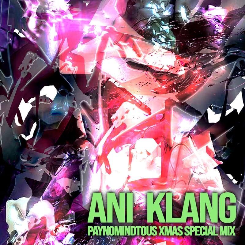 PAYNOMINDTOUS.IT PAYNOMINDTOUS XMAS SPECIAL MIX BY ANI KLANG image 1